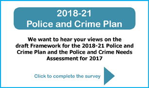 2018-21 Police and Crime Plan Survey 307x183