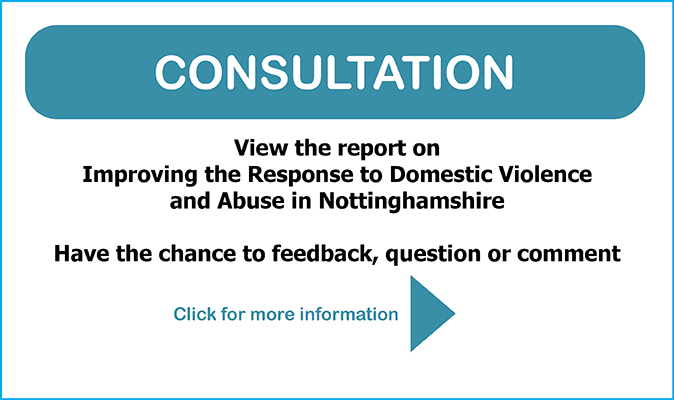 Consultation - Improving Response to DV & DA Slider 674x400